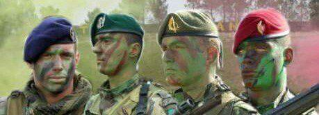 A instrução militar e oExército